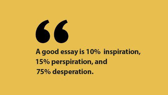 essay quote